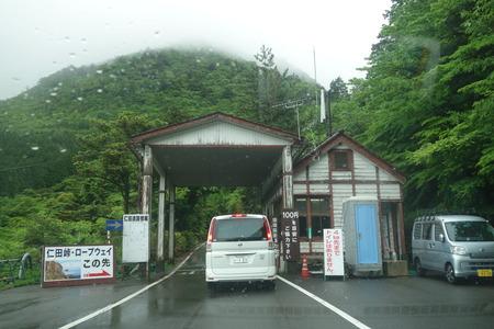 5-雲仙 仁田峠 ミヤマキリシマDSC06754