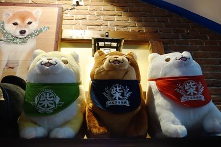 11-豆柴カフェ ハウステンボスDSC09556