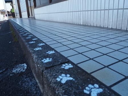 12-本諫早駅-PB205767