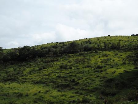 8-雲仙市吾妻町 牧場の里あづまPA202007