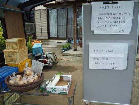 30-諫早市大場町 大室さんのバラ園 P5161320