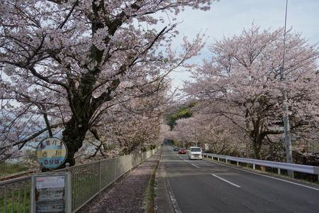 11-多良見町古川DSC05815