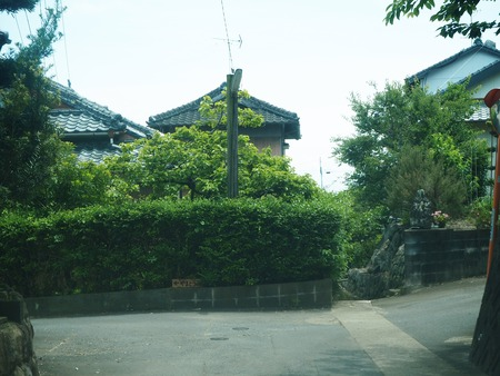 2-南島原市布津 カフェ やまとうみP5231796