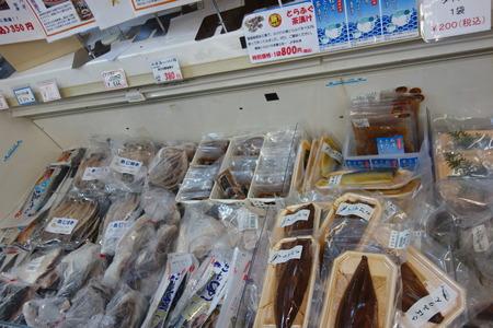 7-松浦海のふるさと館DSC02138
