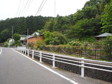 5-諫早市栗面町 Mai's garden P5171363
