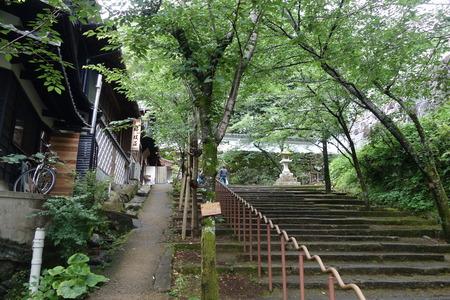 18-大村公園 花菖蒲DSC07590