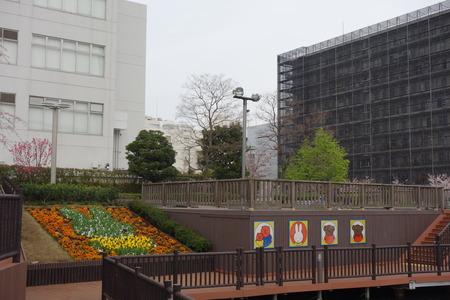 24-東品川海上公園DSC06548