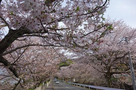 10-多良見町古川DSC05821