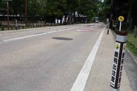 4-奈良公園DSC09090