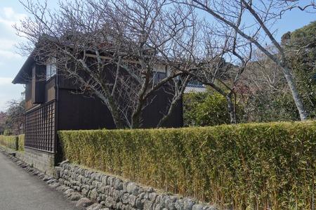 14-国見町神代小路 緋寒桜の郷まつりDSC00390