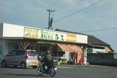 6−雲仙市春菜DSC00195