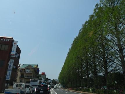 13-運動公園付近DSC09360