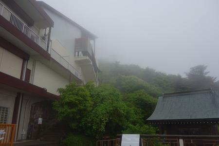 20-雲仙 仁田峠 ミヤマキリシマDSC06827