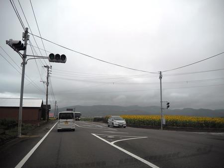 3-愛野町 牛花前P7213980