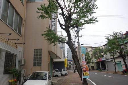 1-ナガセDSC00563