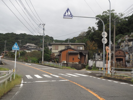 3−多良見町大草 コスモス畑PA191934