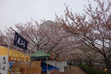 15-東品川会場公園DSC06519