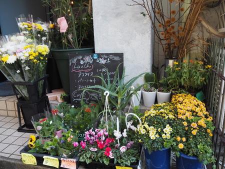 9-長崎市玉園町 花カフェ ガーデンコーヒーPB084159