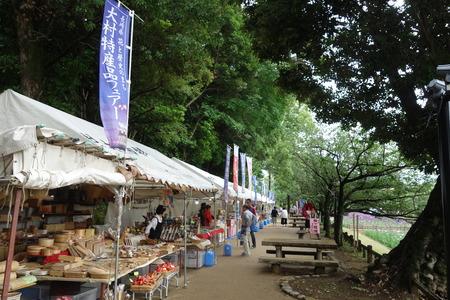 5-大村公園 花菖蒲DSC07651