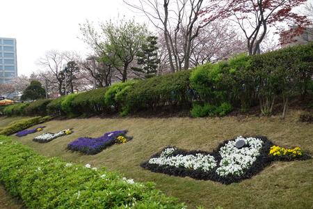 23-東品川海上公園DSC06546