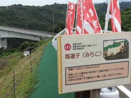 10-多良岳オレンジ海道 海道しるべIMG_20190921_135521