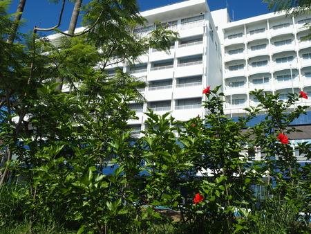 4-雲仙市小浜町 海の見える小さな整体室P6231122