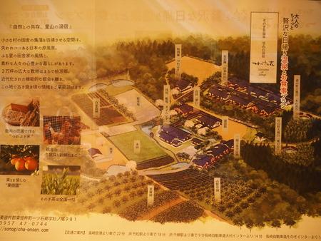 38-東彼杵町 そのぎ茶温泉 里山の湯宿 つわぶきの花P5310533