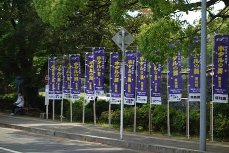 2-諫早公園 蛍DSC05748