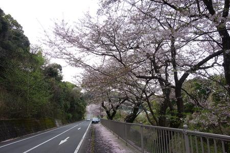 4-多良見町古川DSC05783