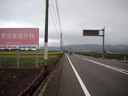 7-愛野町 国道205号線沿いP7213981
