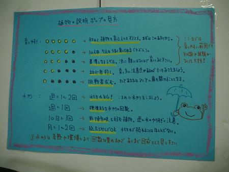 11-諫早市小野島町 干拓の里 じげもん市 松井商店P9078173