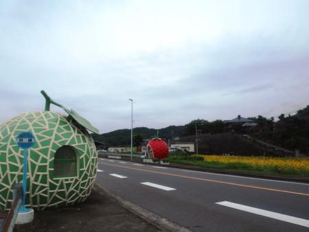 3-諫早市小長井町 フルーツバス停とひまわりP7193382