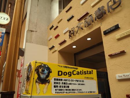 3-Dog catista ドッキヤイスタP6281600