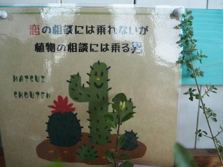 諫早市小野島町 よかもん市 ホノポア トミガワベーカリーP4024988