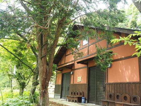 28-東彼杵町 そのぎ茶温泉 里山の湯宿 つわぶきの花P5310434