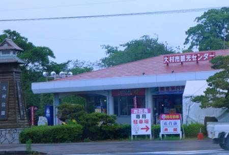 1-大村公園 花菖蒲DSC07486
