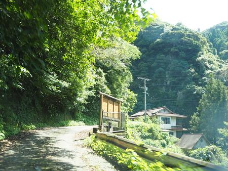 10-東彼杵町 滝の上の猫P8010189