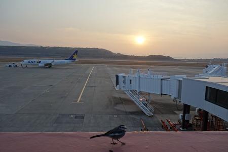 6-長崎空港DSC03228