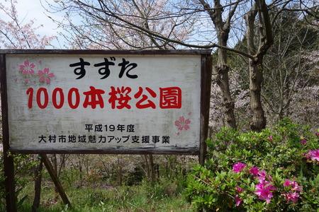 18-大村市鈴田峠千本桜DSC05938