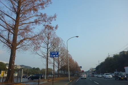 6-長崎運動公園DSC02933