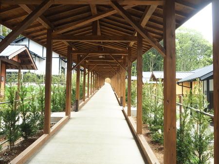 35-東彼杵町 そのぎ茶温泉 里山の湯宿 つわぶきの花P5310420