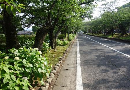 9-大村公園DSC01320