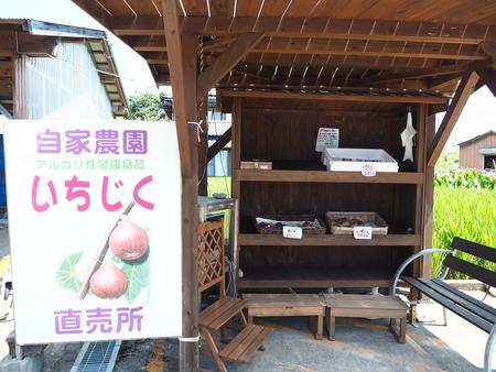 4-諌早市高来町 いちじく直売所P8180109