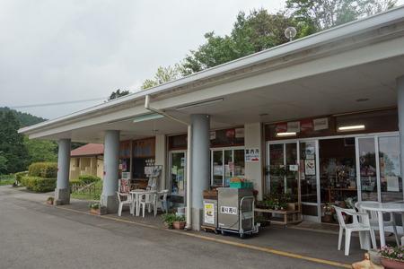 4-山茶花高原DSC07630