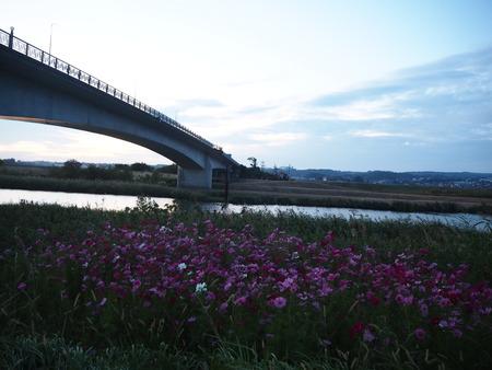 1−不知火橋PA150573