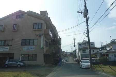 3−長崎市うえきDSC09942