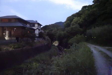 6-長崎市中里町 蛍DSC06487
