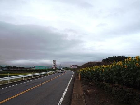 24-愛野町 国道沿いP7214102