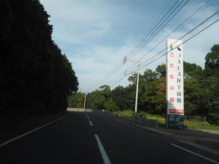 7−白木峰高原 コスモス畑 こどもの城 コスモス花宇宙館PA110779