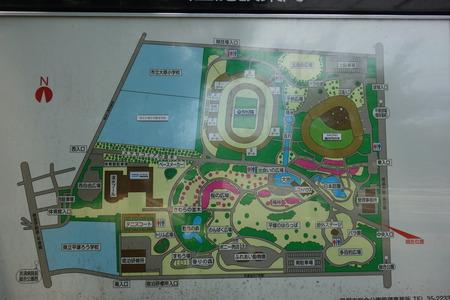 8−平塚市総合公園DSC02284